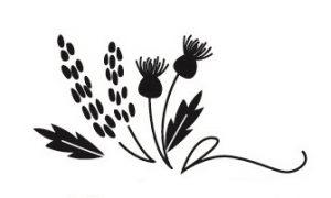Belles & Thistles Florist